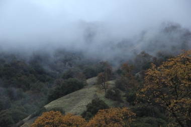 Mist over rolling hills of Sequoia NP